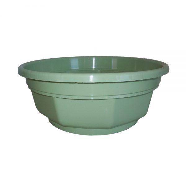 Coupe Flore Vert Pastel